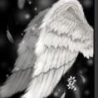 天空的翅膀